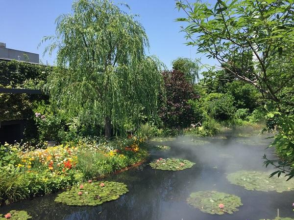 屋上食と緑の空中庭園