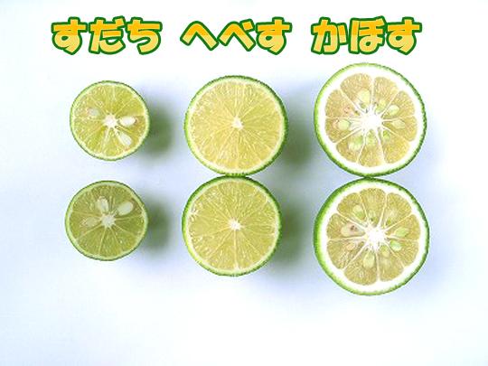 f:id:Meshi2_IB:20160810125747j:plain