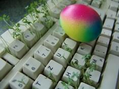 雑草の生えたキーボードのイメージ