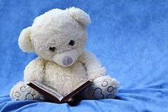 読書中のクマのぬいぐるみのイメージ