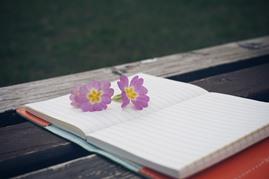 日記を書くイメージ