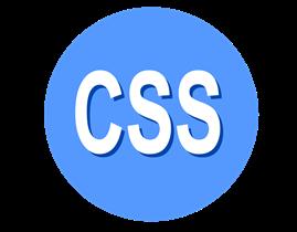 カスタマイズ用CSS