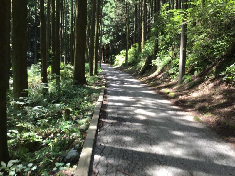 f:id:Michiko_Kurino:20180818123310j:image:w250