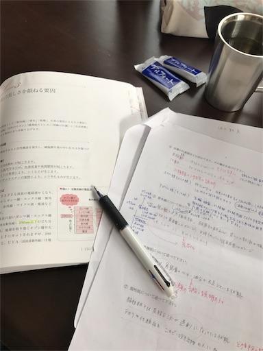 f:id:Migaku:20170315174053j:image