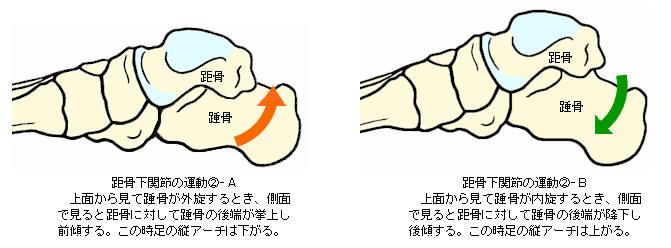 f:id:MihoKondo:20180408002939j:plain