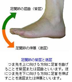 f:id:MihoKondo:20180408003250j:plain