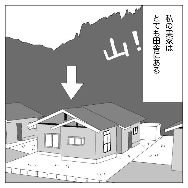 f:id:Mikkuru:20210710194421j:image