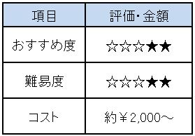 f:id:Minimalist_yuha:20190409215950j:plain