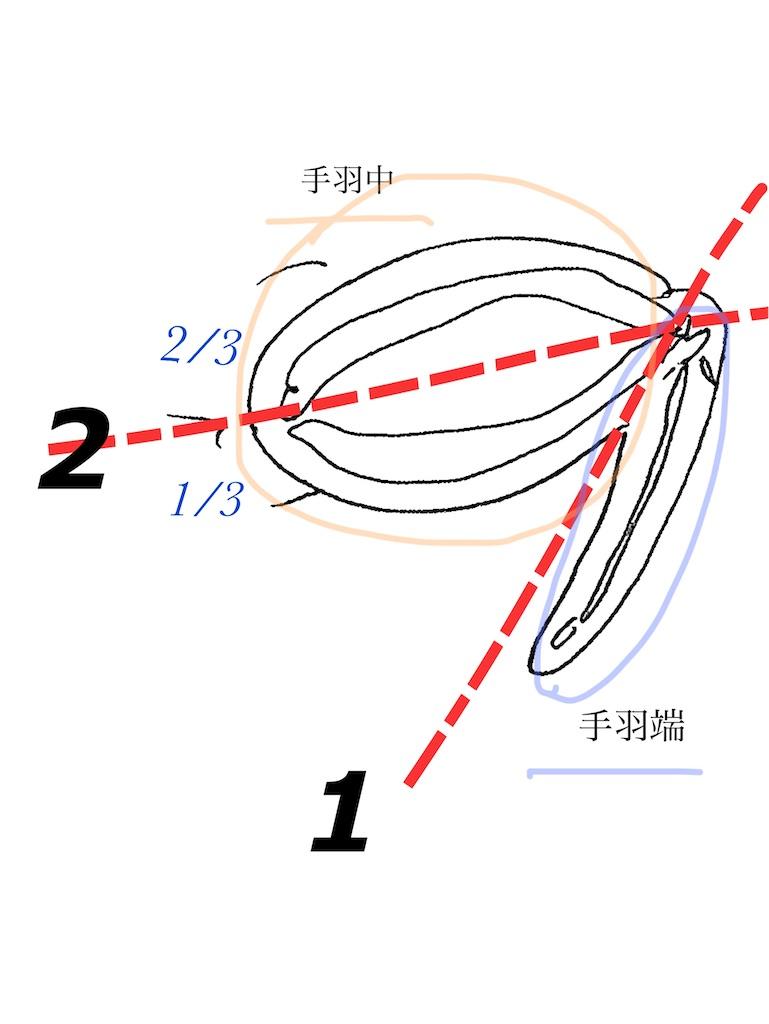 f:id:Mirai11:20210130112406j:plain