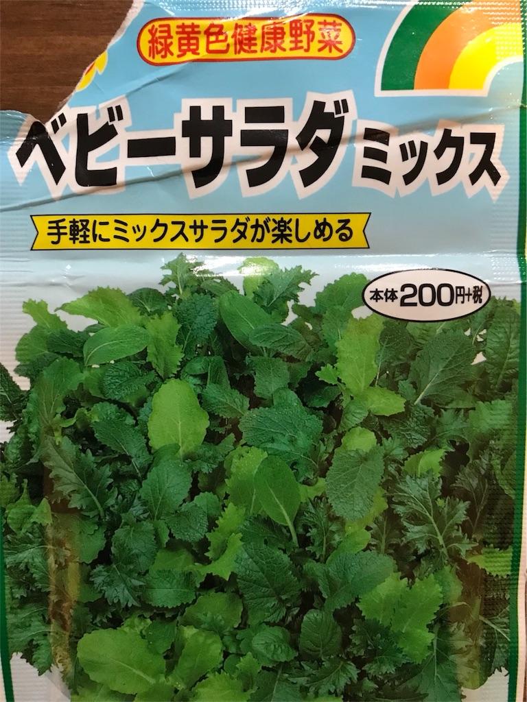 f:id:MisaTamaki:20180905074300j:image
