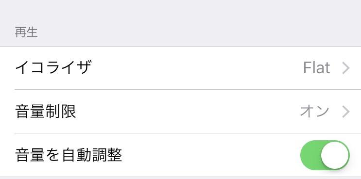 f:id:MisaTamaki:20181229222844j:plain