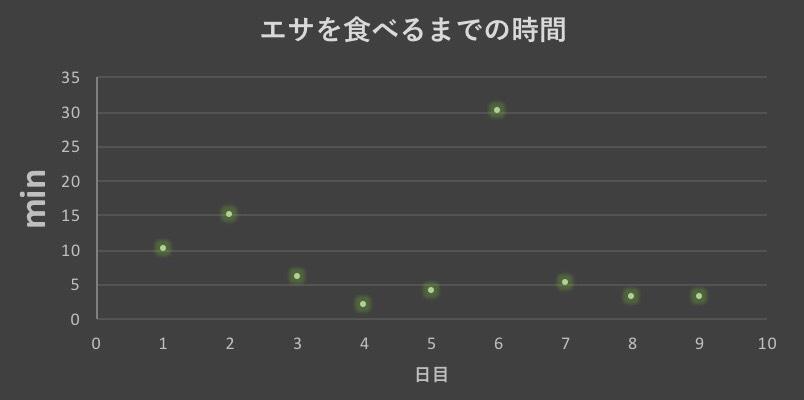 f:id:MisaTamaki:20190127141410j:plain