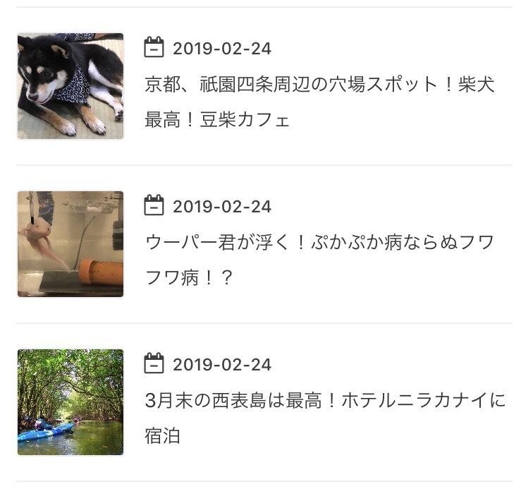 f:id:MisaTamaki:20190316204908p:plain