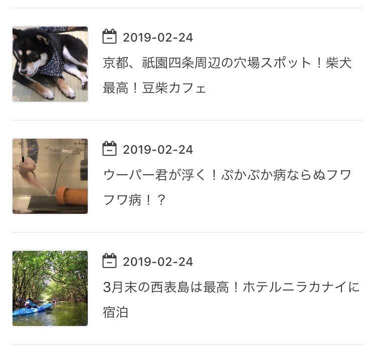 f:id:MisaTamaki:20190316212558p:plain