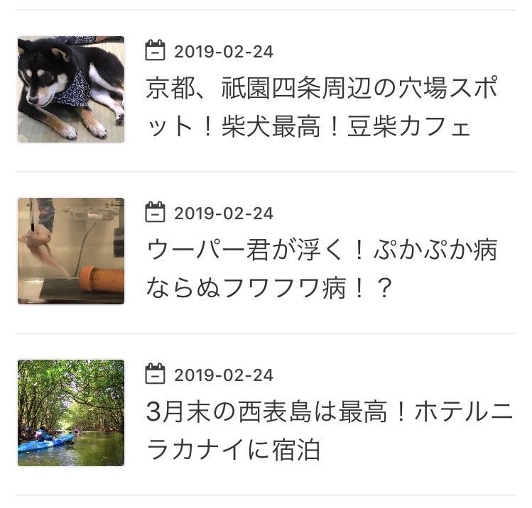 f:id:MisaTamaki:20190316214516p:plain