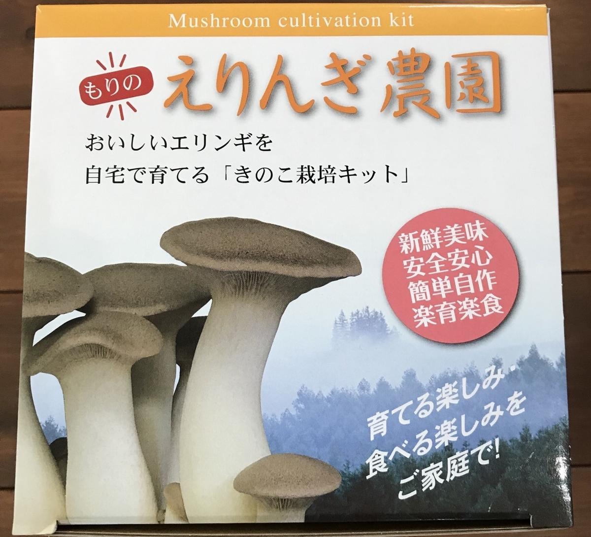 f:id:MisaTamaki:20200321205433j:plain