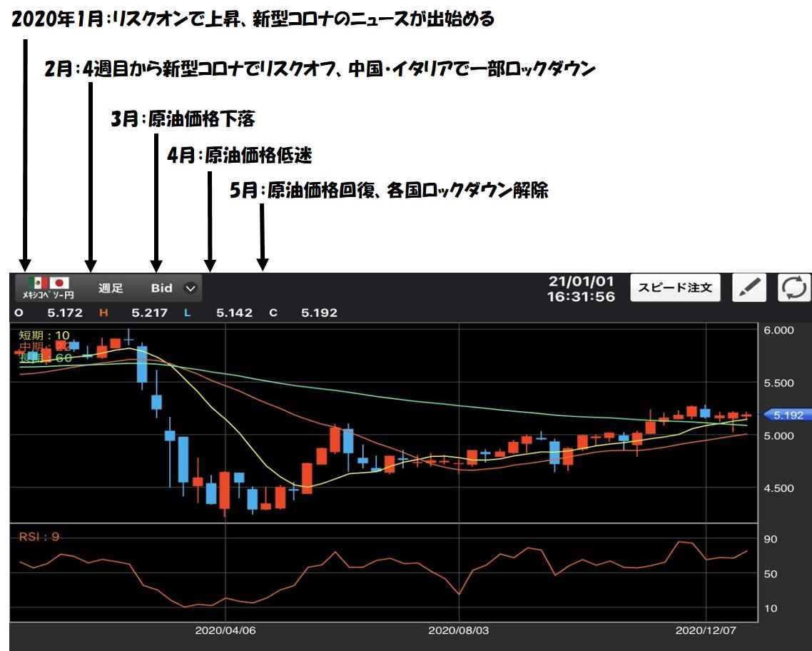 f:id:MisaTamaki:20210102123257j:plain