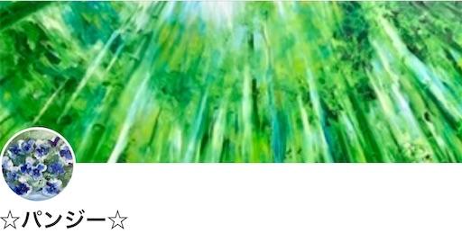 f:id:MisuPansy:20200712145016j:image