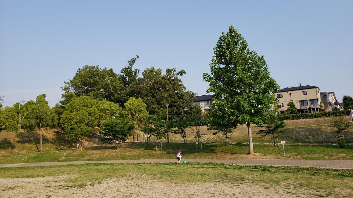 f:id:Mitsu-RS:20210616063010j:plain