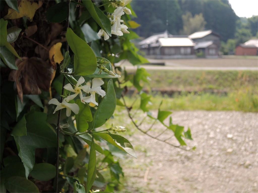 f:id:Mitsuhiko:20170521185818j:image
