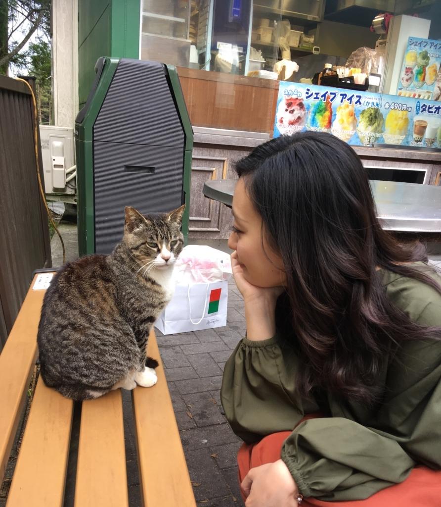 f:id:Mizukame:20170612134913j:plain