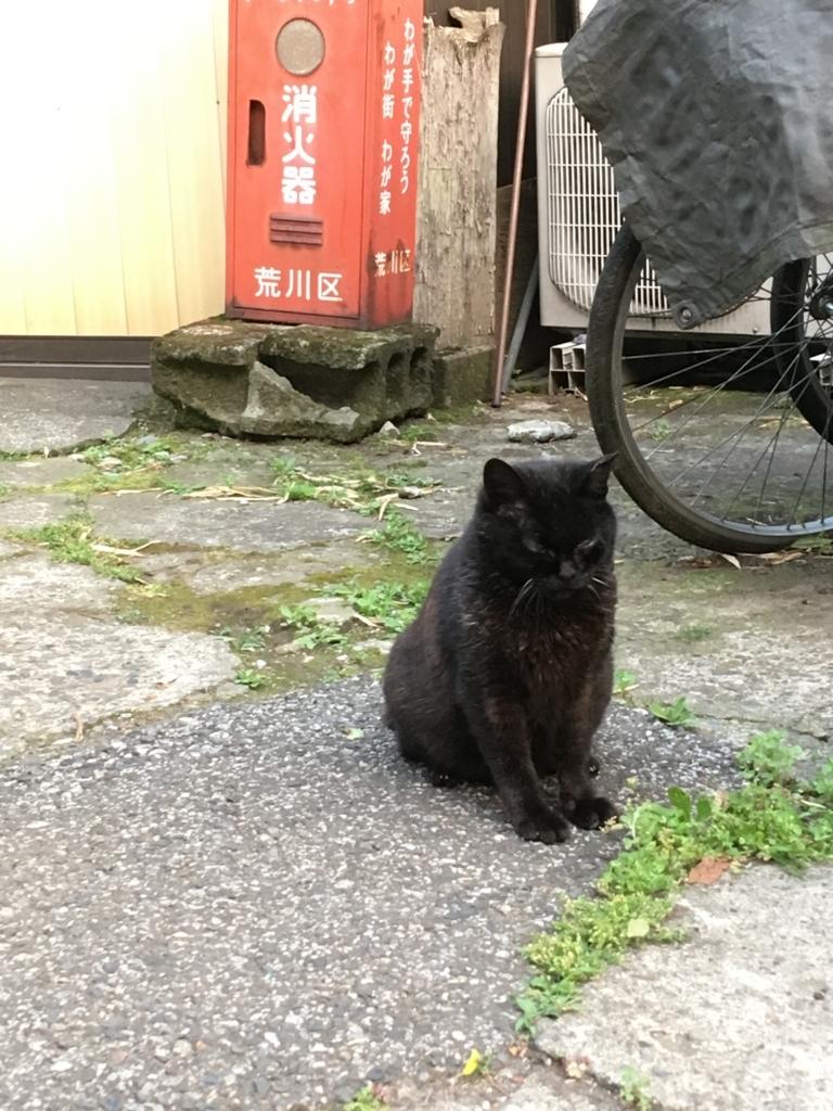 f:id:Mizukame:20170612152937j:plain
