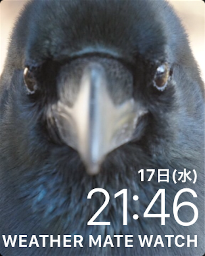 f:id:MizukiTakamagahara:20180117214759p:image