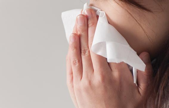 点 鼻薬 ブセレリン ブセレリン点鼻液0.15%「ILS」