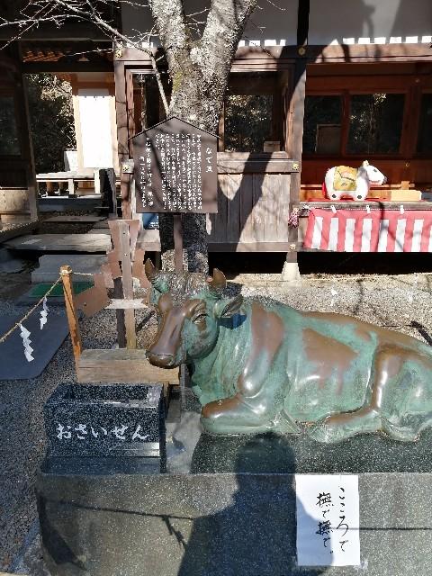 f:id:Mizunomi-ba:20210305094800j:image