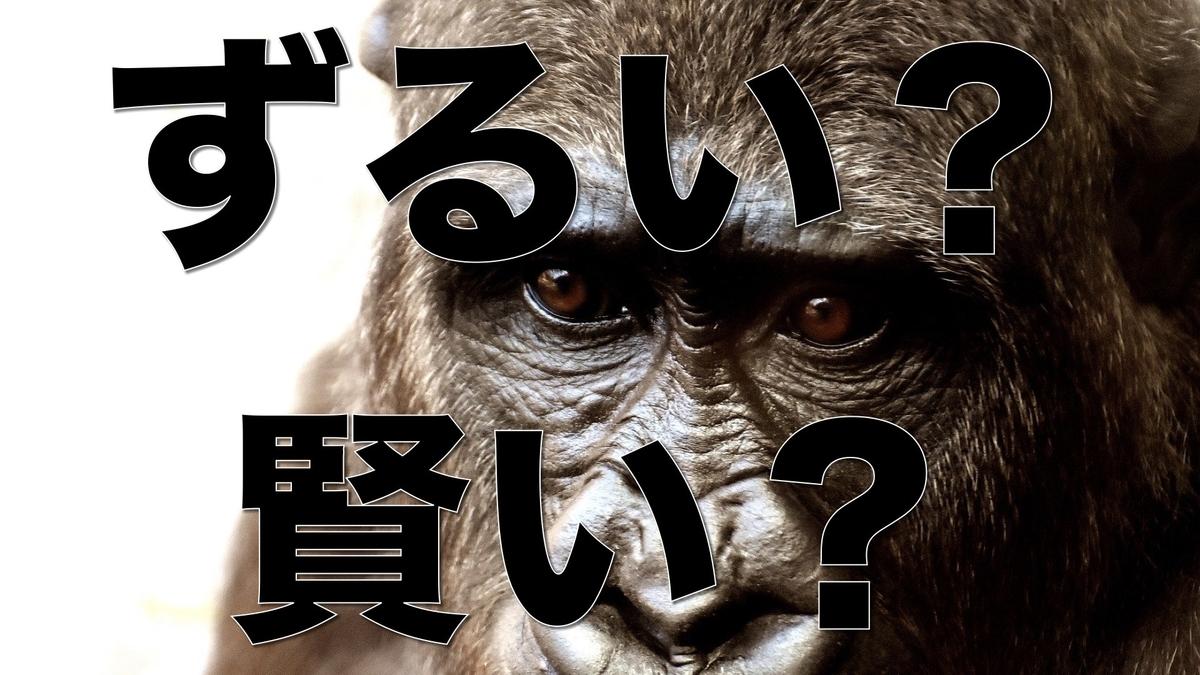 f:id:Mizutakooo:20200729114558j:plain
