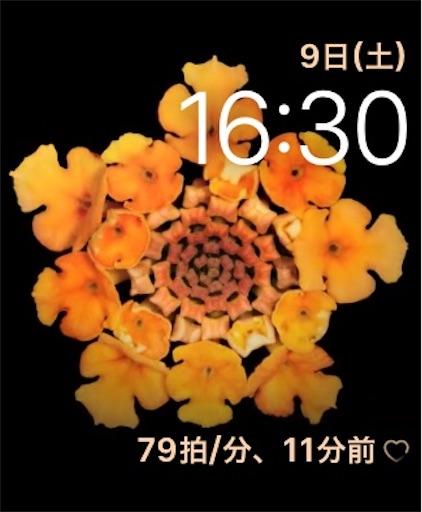 f:id:Moblog:20200511094505j:image