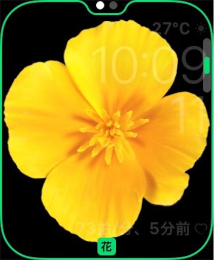 f:id:Moblog:20200511095426j:image