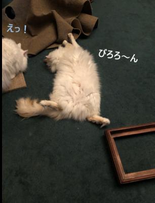 f:id:MofuMama:20210305002454p:plain