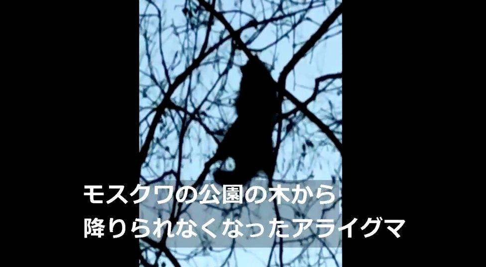 f:id:Monomane:20201222200344j:plain