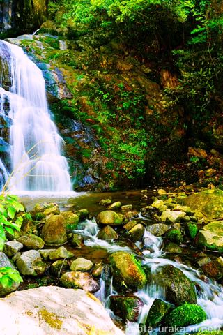 ライカQで滝を撮影。