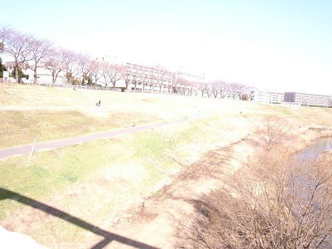 f:id:MotoNesu:20090224051105j:image