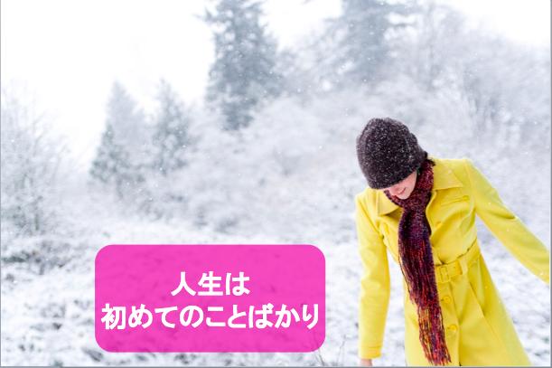 f:id:MotoNesu:20111225204519p:image
