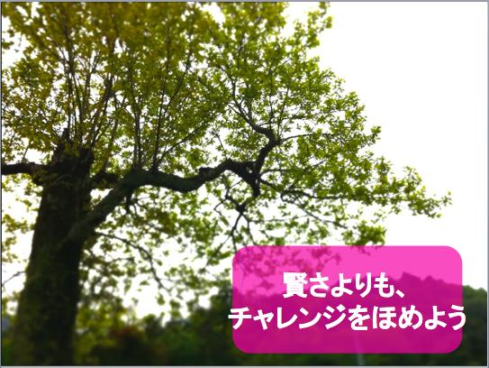 f:id:MotoNesu:20111225204529p:image
