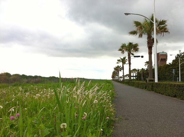 f:id:MotoNesu:20120504122649j:image
