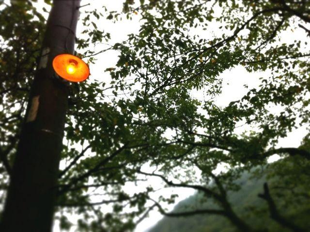 f:id:MotoNesu:20120606050345j:image