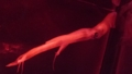[ユウレイイカ][ユウレイイカ科][ツツイカ目][頭足類][江ノ島水族館]