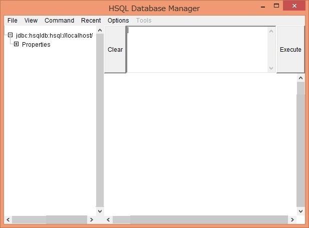 DatabaseManager起動成功
