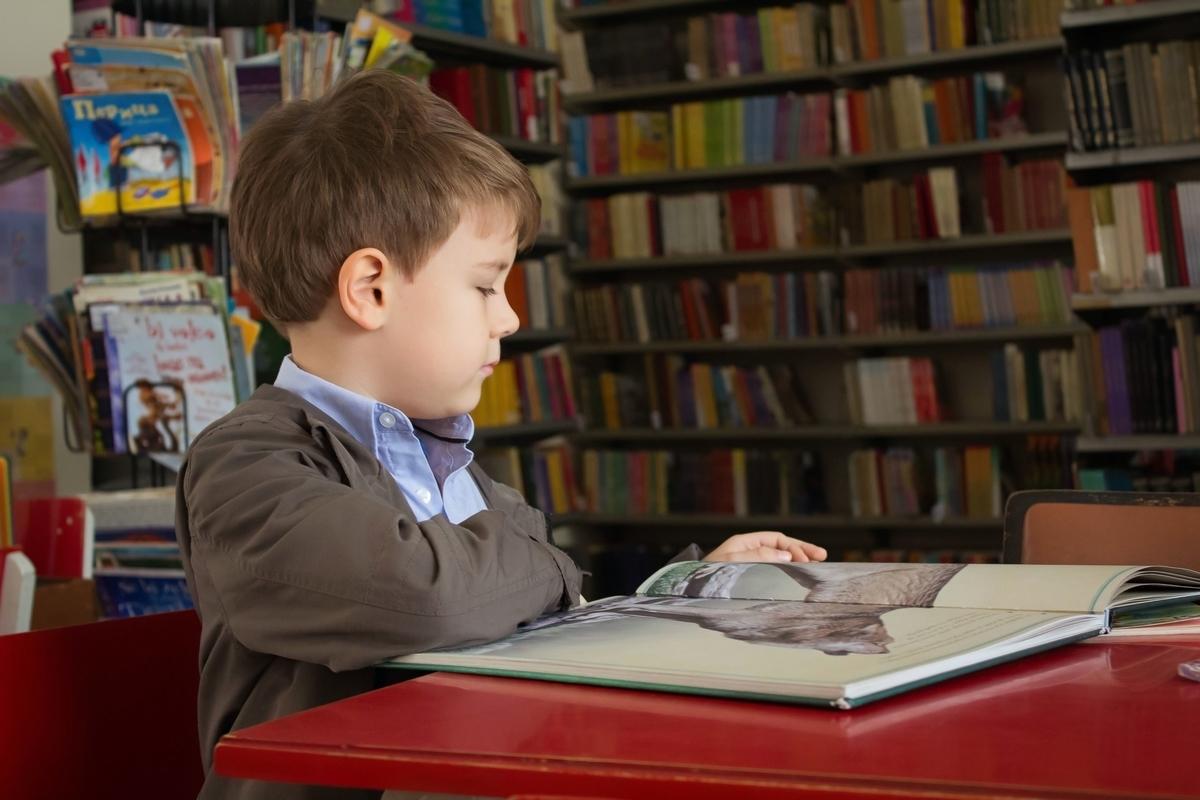 アメリカ現地小学生の読書