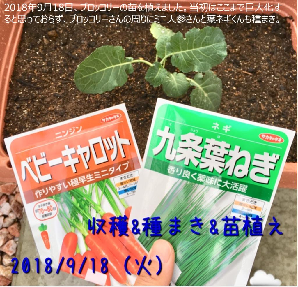 f:id:Mt_vegetable:20181227163332p:plain