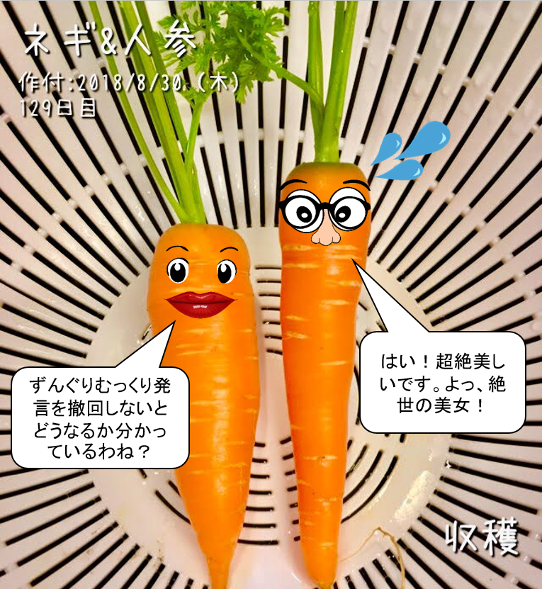 f:id:Mt_vegetable:20190106205311p:plain