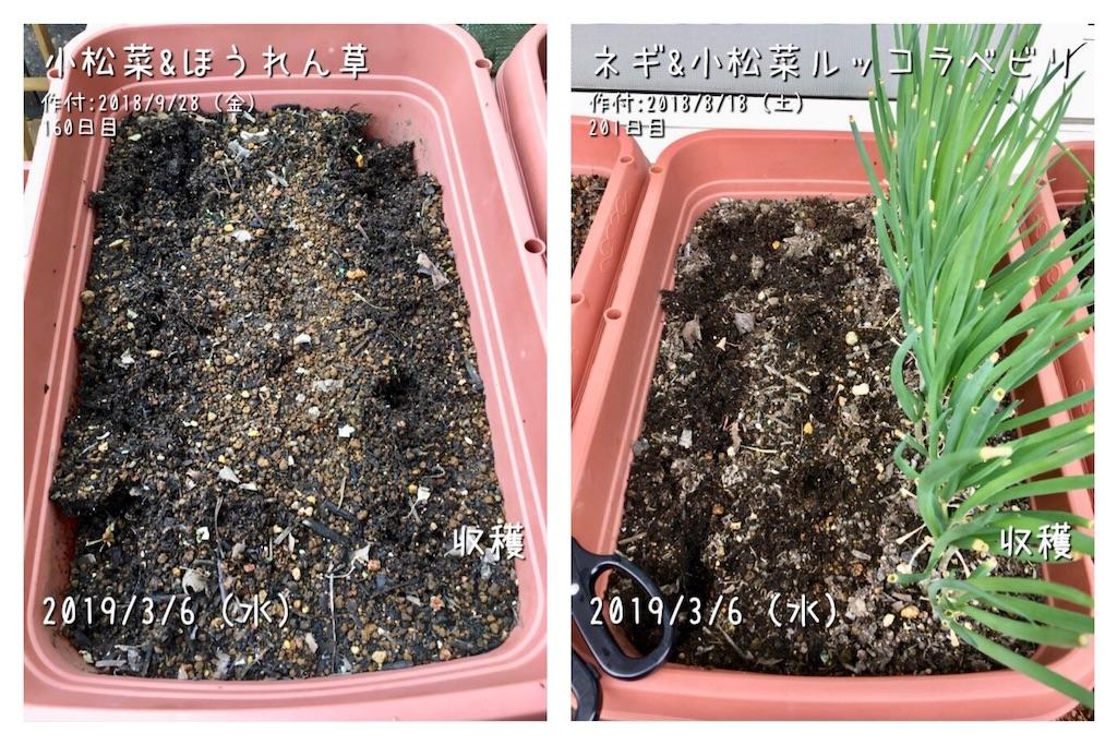 f:id:Mt_vegetable:20190306201028j:image