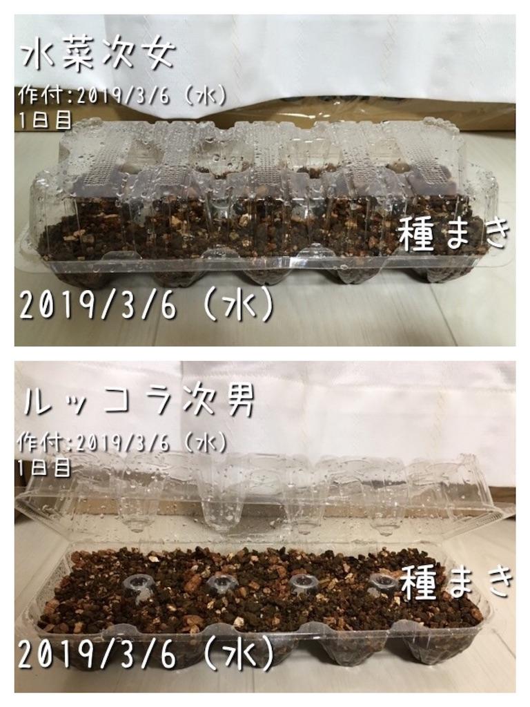 f:id:Mt_vegetable:20190306201049j:image