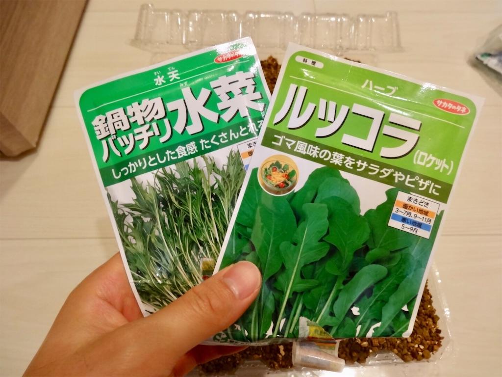 f:id:Mt_vegetable:20190306201104j:image