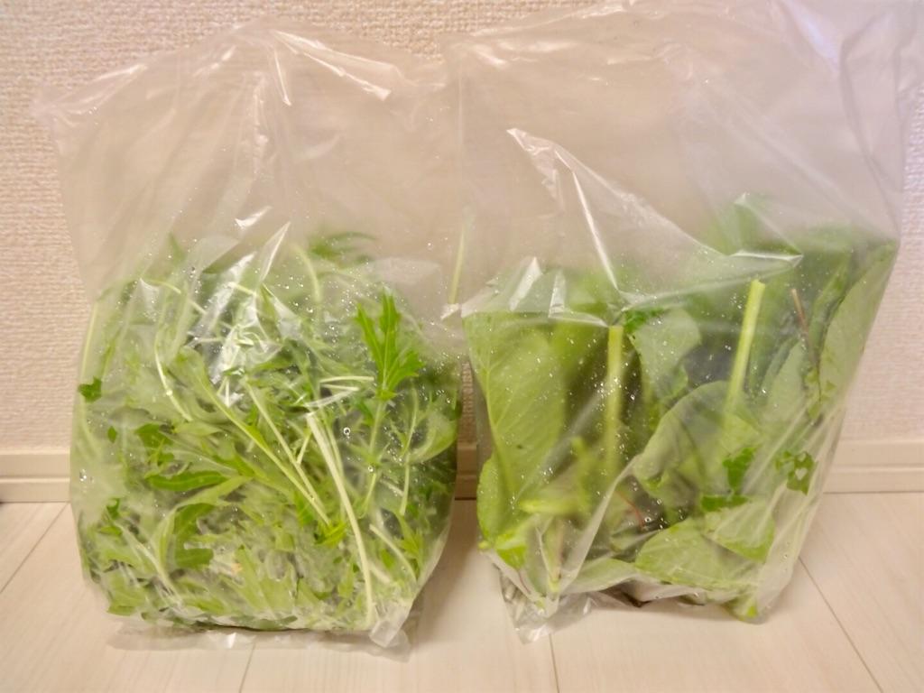 f:id:Mt_vegetable:20190501180711j:image