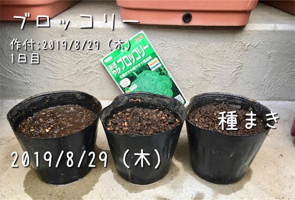 f:id:Mt_vegetable:20190830110042j:image
